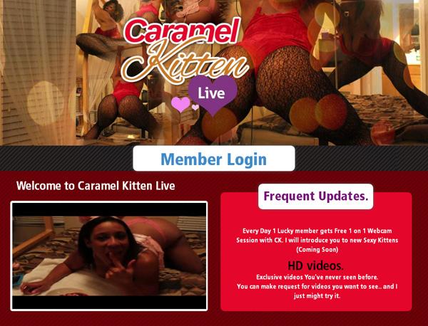 Caramel Kitten Live Free Premium