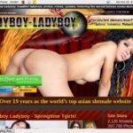 Ladyboy Ladyboy Mail Order