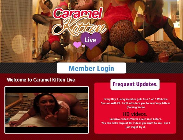 Caramel Kitten Live Free Trial Account