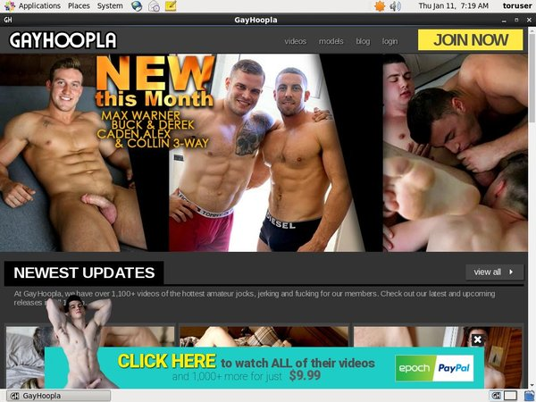 Gay Hoopla Free Memberships